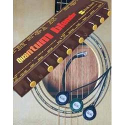 K&K Sound - Quantum Trinity Western 12-String