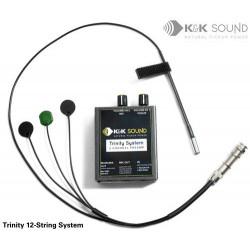 K&K Sound - Trinity Western 12-String Pickup
