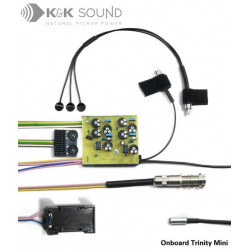 K&K Sound - Trinity Western Onboard 12-Strings Pickup