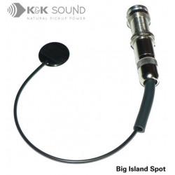 K&K Sound - Big Island Spot Pickup internal